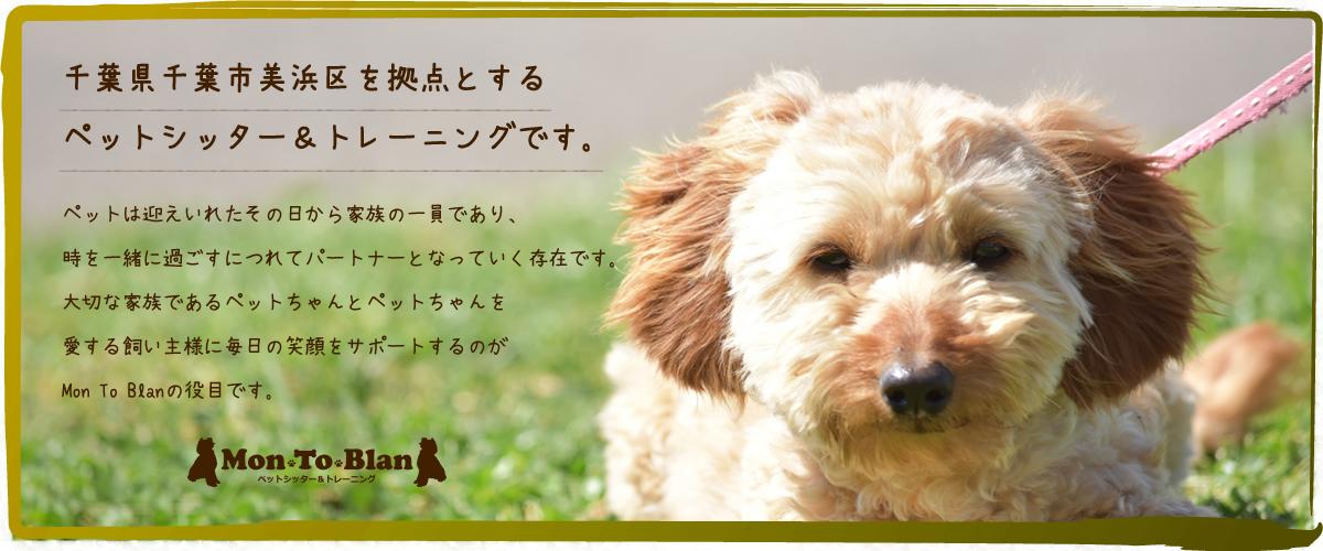 千葉県・ペットシッター