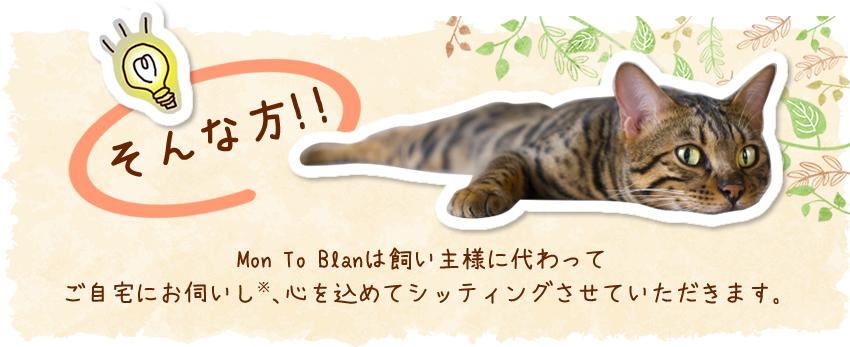 ペットシッター、Mon To Blanは飼い主様に代わってご自宅にお伺いし、心を込めてシッティングさせていただきます。